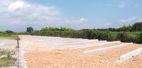 太陽光発電システムの基礎設計と工法について