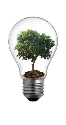 エネルギー消費効率